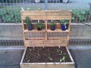 combination planter box