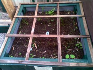 large planter box 2